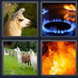 4 Fotos 1 palabra nivel 249