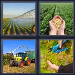 4 Fotos 1 palabra nivel 945