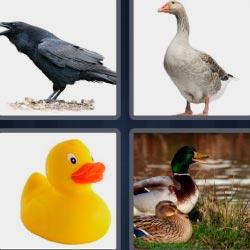 4 fotos 1 palabra nivel 992