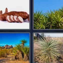4 fotos 1 palabra 1493