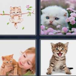 4 fotos 1 palabra 1536
