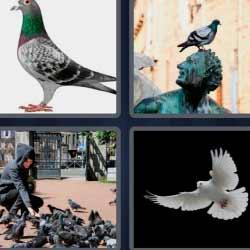 4 fotos 1 palabra 1540