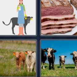 4 fotos 1 palabra 1568