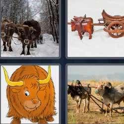 4 fotos 1 palabra 1572